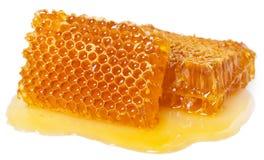 Honeycomb with honey on white background stock image