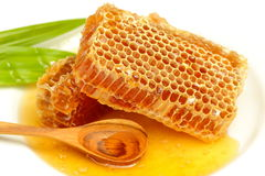 Honeycomb with honey on the white. Royalty Free Stock Images