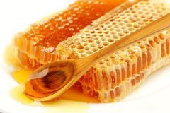 Honeycomb with honey on the white. Stock Images