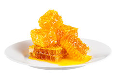 Honeycomb with honey Stock Photography