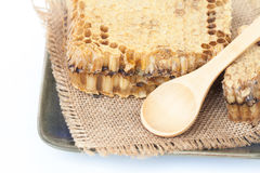 Honeycomb on isolate or white Royalty Free Stock Image