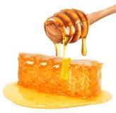 Honeycomb. Isolated on white background Stock Image