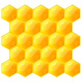 Honeycomb, isolated on the white. Vector. Royalty Free Stock Images