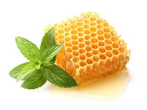 Honeycomb with mint Royalty Free Stock Photos