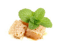 Honeycomb with mint in closeup Stock Images
