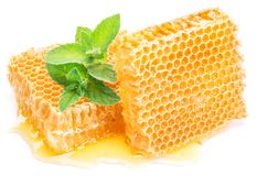 Honeycomb and mint. High-quality picture. Stock Images