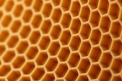 Free Honeycomb Pattern Stock Photos - 119255023
