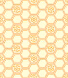 Honeycomb pattern. Honeycomb seamless pattern with the chamomiles Royalty Free Stock Photo