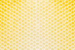 Honeycomb pattern Royalty Free Stock Photo