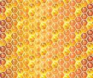 Honeycomb pattern. Honeycomb seamless pattern. Honey dripping, bee honey drops, honey background. Honeycomb for advertising design, realistic fresh healthy food Royalty Free Stock Photos