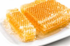 Honeycomb pieces on white plate close-up Stock Photos