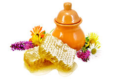 Honeycomb with pitcher and flowers Stock Photography
