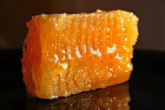 Honeycomb on plate. Orange wet sticky honeycombs on black plate Royalty Free Stock Photography