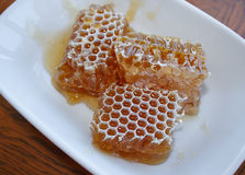 Honeycomb in plate Stock Images