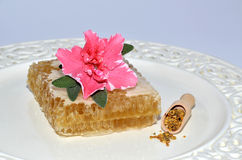 Honeycomb, pollen and flower Stock Photos