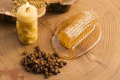 Honeycomb, pollen and propolis. On wooden background Royalty Free Stock Photos