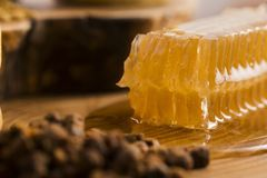 Honeycomb, pollen and propolis Stock Image