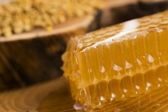 Honeycomb, pollen and propolis. On wooden background Stock Photo