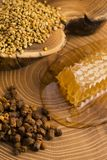 Honeycomb, pollen and propolis. On wooden background Stock Photography