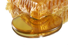 Honeycomb in pool of honey Royalty Free Stock Photo