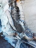 Honeycomb Sandstone Patterns, Bondi Beach, Australia Stock Photo