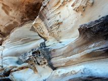 Honeycomb Sandstone Patterns, Bondi Beach, Australia Royalty Free Stock Photography