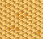 Honeycomb seamless pattern. Vector illustration in eps10 format Royalty Free Stock Photography