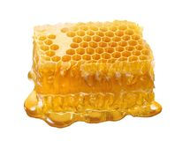 Honeycomb single piece. Honey slice isolated on white background stock photography