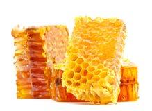Honeycomb slice Stock Photography