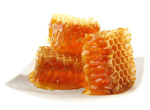 Honeycomb slice stock photos