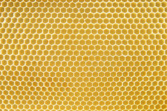 honeycomb texture Stock Images