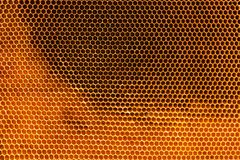 Honeycomb texture Royalty Free Stock Photos