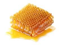 Honeycomb w zbliżeniu Fotografia Stock