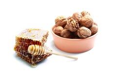 Honeycomb and walnut Royalty Free Stock Photos
