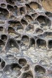 Honeycomb weathering patterns in the Yehliu Geopark, New Taipei, Royalty Free Stock Image