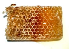 Honeycomb from which honey flows stock images