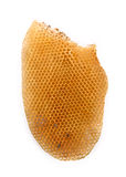 Honeycomb on white background. Royalty Free Stock Images