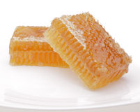 Honeycomb on white plate Stock Photography