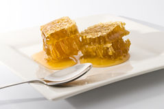 Honeycomb on white plate. Yellow honeycomb wax cell detail slice on white plate Stock Photos