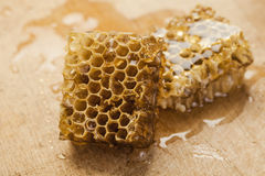 Honeycomb on wooden background Stock Photography