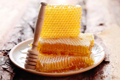 Honeycomb Royalty Free Stock Images