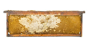 Honeycomb wooden frame Stock Images