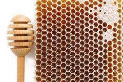 Honeycomb and wooden stick Stock Images