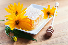 Honeycomb and yellow flowers Stock Images