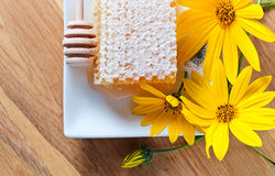 Honeycomb and yellow flowers Royalty Free Stock Photos