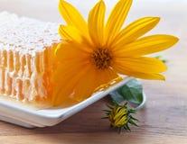 Honeycomb and yellow flowers Stock Photo
