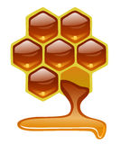 Honeycomb z miodem Zdjęcia Stock