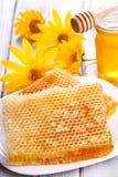 Honeycombs Royalty Free Stock Photos