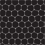 honeycombs illustration stock