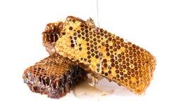 honeycombs image libre de droits